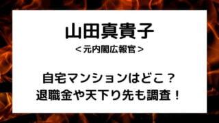 山田真貴子内閣広報官の自宅マンションはどこ?
