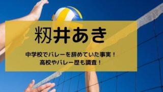 籾井あきは中学校でバレーを辞めていた事実!高校やバレー歴も調査!