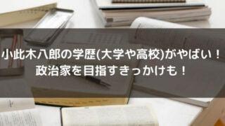 小此木八郎の学歴(大学や高校)がやばい!政治家を目指すきっかけも!