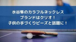 水谷隼のカラフルネックレスのブランドはクリオ!子供の手づくりビーズと話題