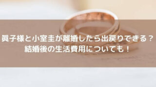 眞子様と小室圭が離婚したら出戻りできる?結婚後の生活費用についても!
